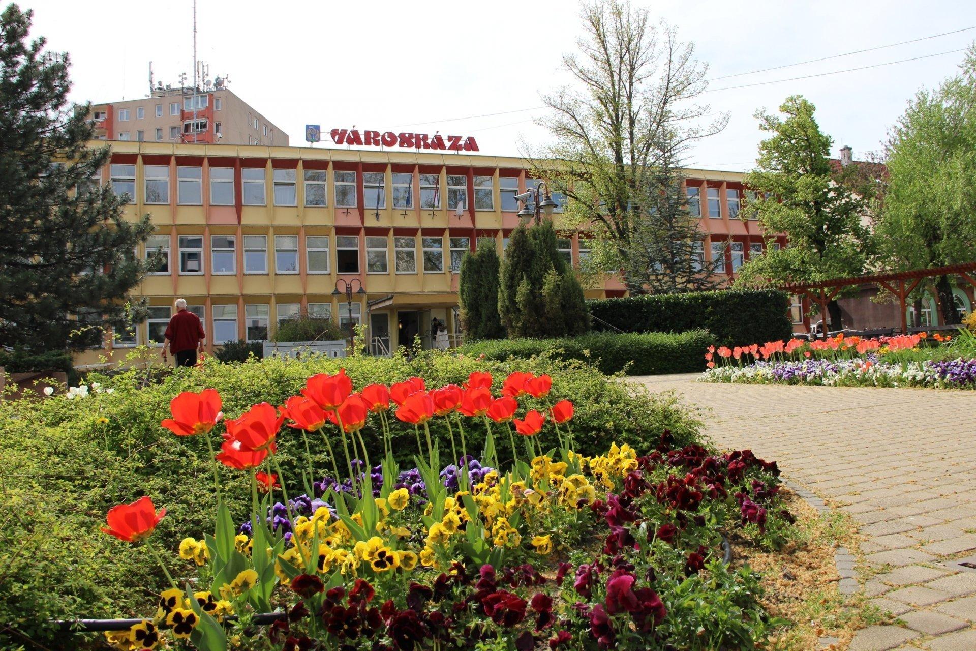 Városháza- Helyi Választási Iroda
